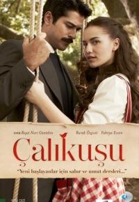 ნარჩიტა (1 სეზონი) (ქართულად) / Çalikusu (2013 )